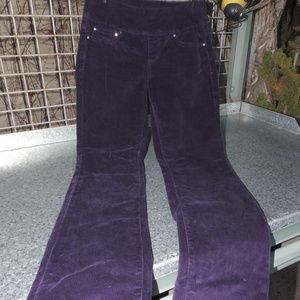 JAG Purple Corduroy Pants 2P
